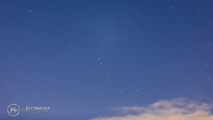 Comet ISON's rapidly brightening tail, 11/16/13.
