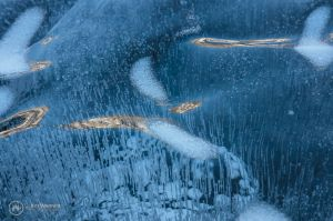 023(5DS10478)-DreamLakeIce_800x.jpg